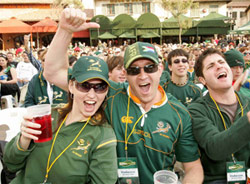 Springbok Rugby Fans
