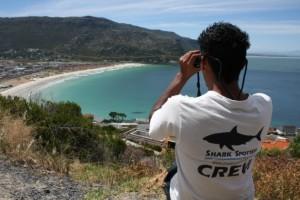 Shark spotter Fish Hoek Photo: Alison Kock