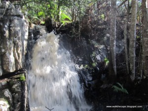 Silvermine Waterfall (Photo:Walk the Cape Blogspot)