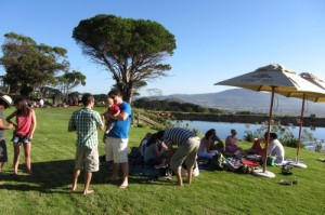 Picnic At Cape Point Vineyards