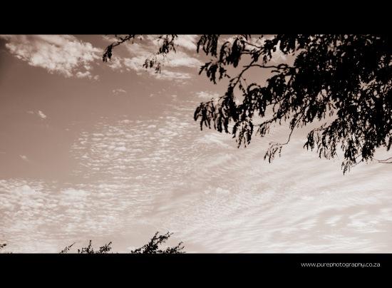 Kommetjie Sky