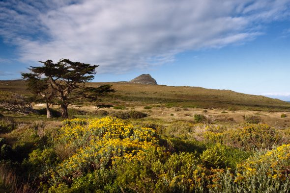 Experience this for FREE! (@Cape Point by Brett Cole)