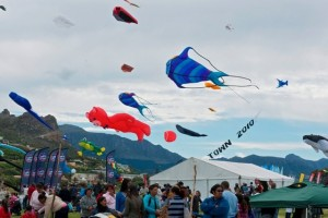 CapeTown International Kite Festival - Elsa Hoffmann