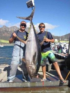 86.7kg tuna