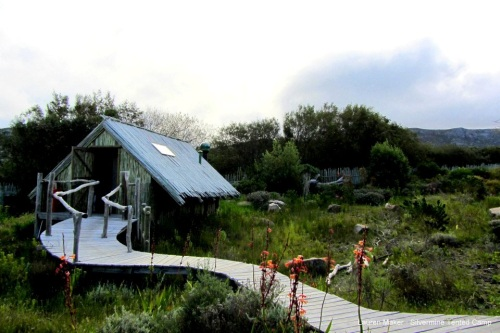 Lauren Maker Silvermine Tented Camp