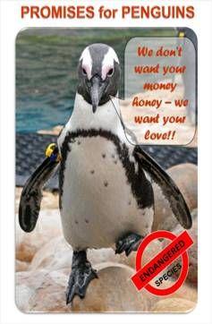 promises for penguins