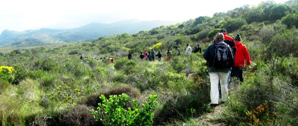 10 fynbos walk