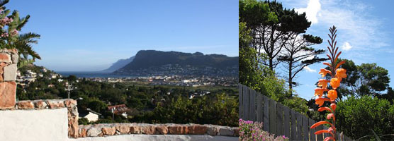 Clovelly Awakenings view and fynbos
