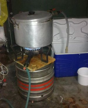 Boiling the Wort with hops