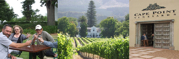 Cape Point Wine Tour