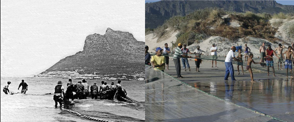 Trek Fishing in Hout Bay 1952 and today