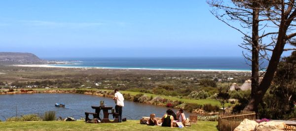 Cape Point Vineyards- picnic area