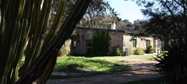 Secluded Mountain Cottage, near Cape Point