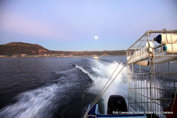 Dawn departure from Simon's Town- Photo Rob Lawrence