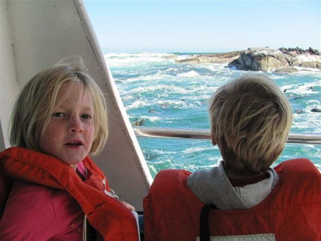 Seal Island Boat Trip with Kids. Photo. Cape Point Route