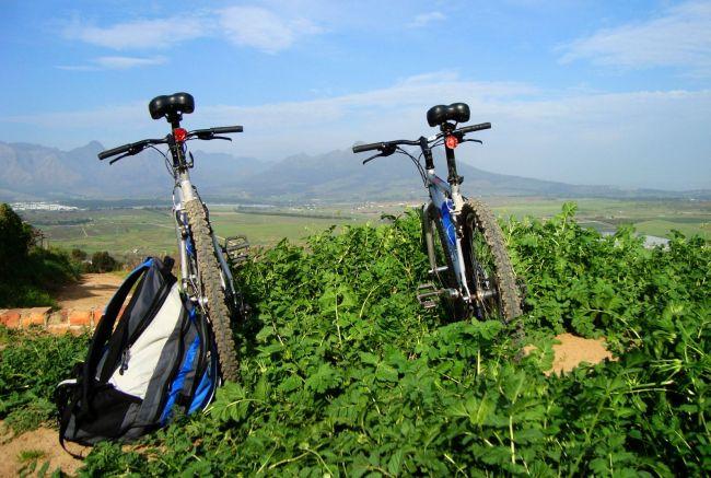 Winelands Bike 'n Wine Day Tour