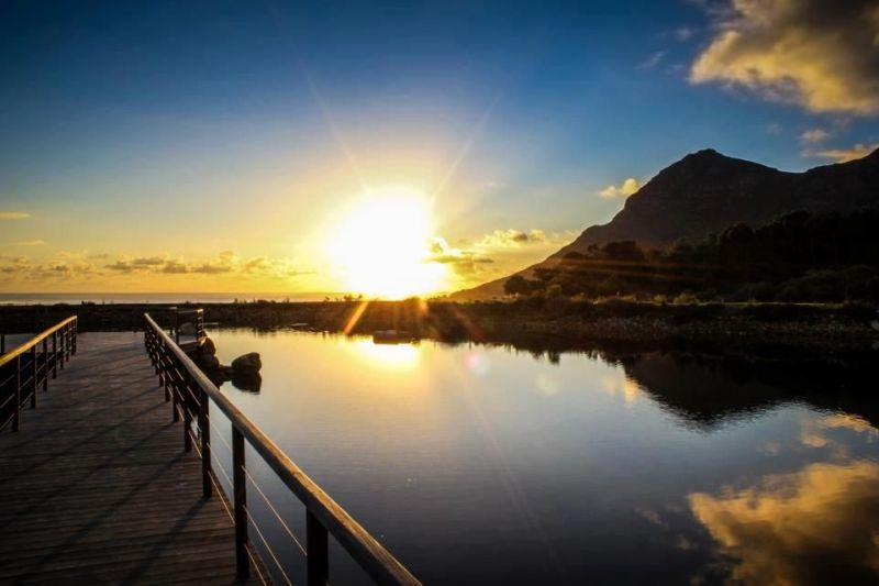 Cape Point Vineyards sunset. Photo. CPV