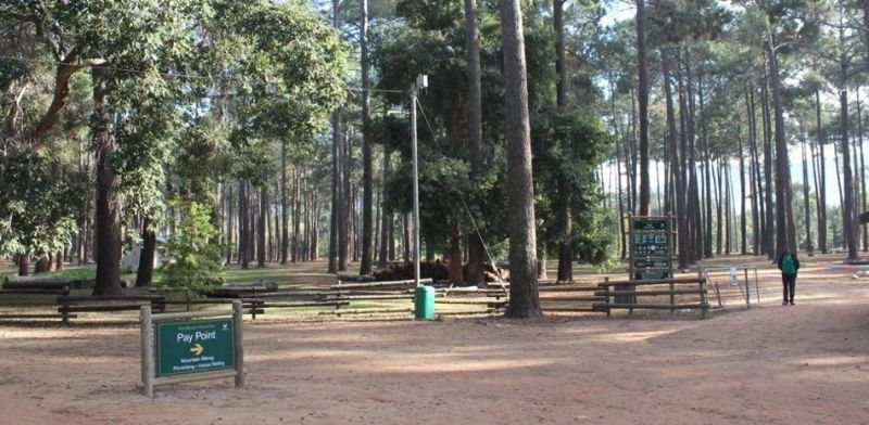 Tokai Forest Photo:GalleryProperties.co.za