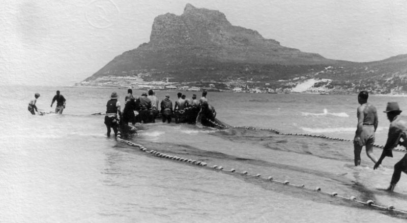 1950 photo of Trek Fishing in Fish hoek