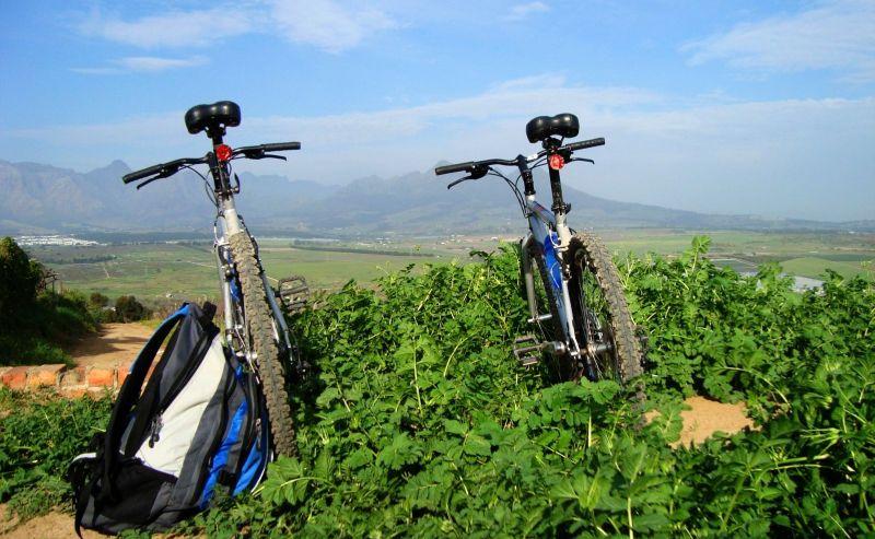 Winelands Bikes 'n Wines Tour