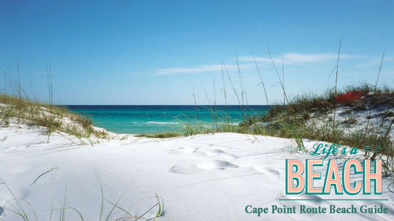 Cape Point Route Beach Guide