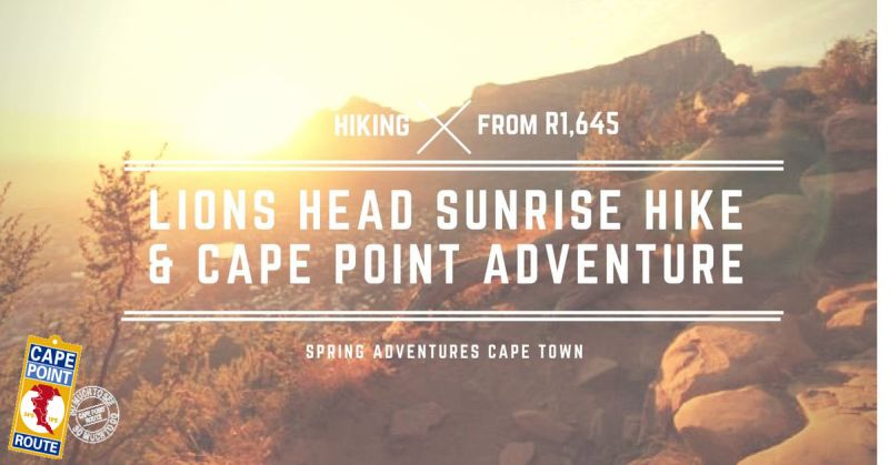 Hike Lions Head at sunrise then explore the Cape in adventure style