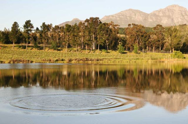 Winelands Photo Tour Photo: Peter Haarhof
