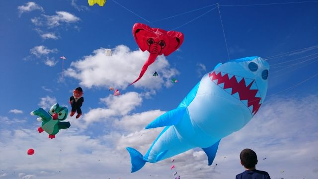 Shark & elephant kites. Photographer Cathy Williams