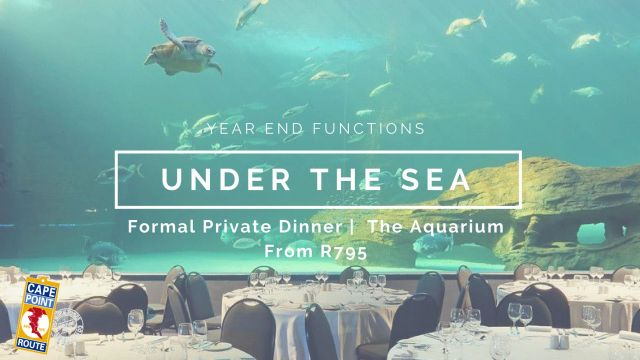 03-yef-under-the-sea