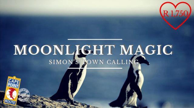 02-moonlight-magic