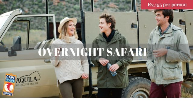Winter Escapes - Overnight Safari