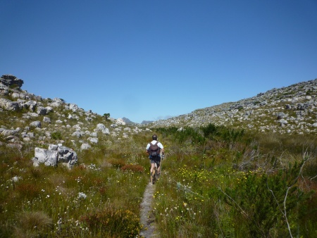 Redhill to Slangkop Trail