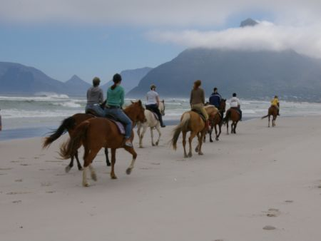 Horse Riding in Cape Town