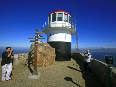 Cape Peninsula Tour- half day