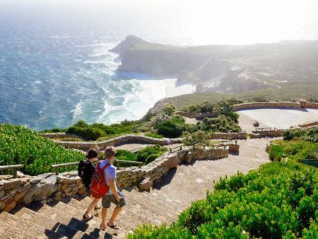 Half day tour of Cape Peninsula