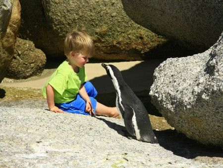 Adventure Day Tour, Cape Town Family friendly