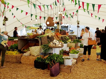 Cape Town Food Markets Day, Capetown Day tours