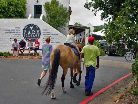 Noordhoek Horse Riding Adventure