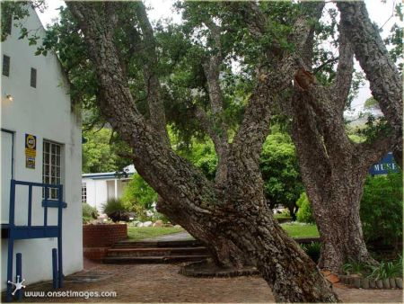 Cape Town Museums,  Hout Bay Museum