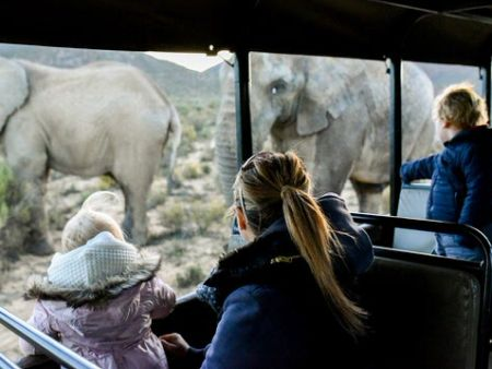 Cape Town Family Safari - overnight pacakge