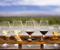 Winelands Tipple & Taste