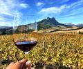 Winelands Budget Full Day Tour