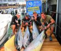 Big Blue Fishing Charters