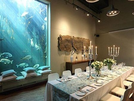 Cape Town Year end Functions, Under The Sea