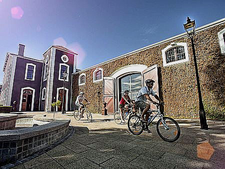 Cape Town activity, bike and wine tour