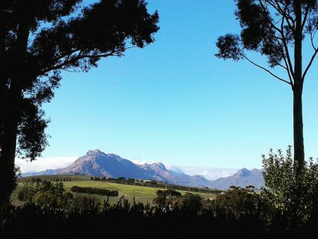 Winelands Day Tour - tipple and taste pairings