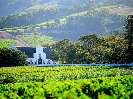 Winelands Private Day Tour
