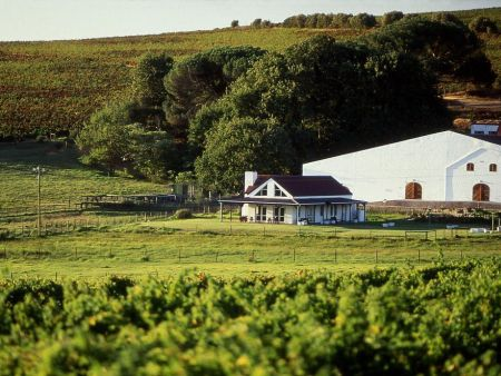 Guided Private Tour in Cape Winelands