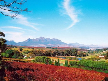 Tipple & Taste Overnight Winelands Getaway