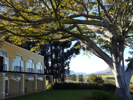 Devon Valley Overnight Wine Tasting Getaway